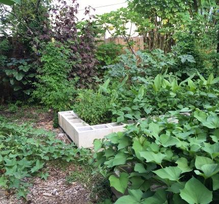 Flourishing gardens.