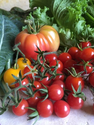 Tomato and greens harvest.