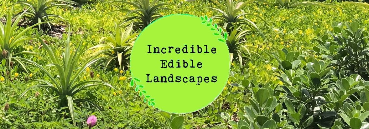 Incredible Edible Landscapes